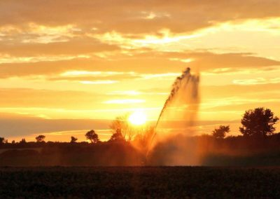 A sunset view of a farm irrigator spraying water into the sky against golden clouds